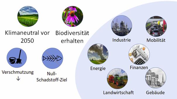 EU-Ziele, Bereiche und Arbeitsfelder
